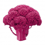 broccoli_in_pink_gloss